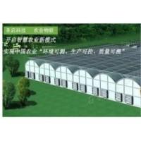 黑龙江智慧农业方案,圣启农业物联网系统优质供应商