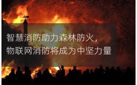 智慧消防助力森林防火,物联网消防将成为中坚力量